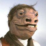 Profilbild von Adrian