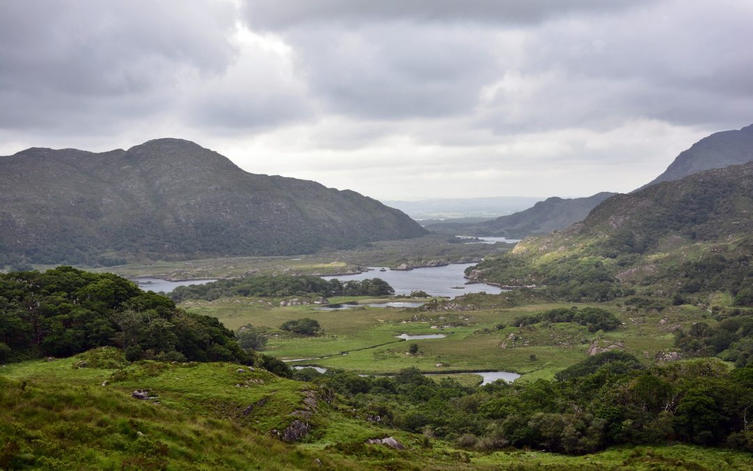 Praktikum im Killarney Nationalpark