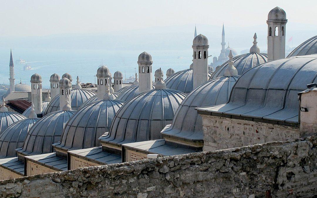 Internship at Maya Foundation in Istanbul