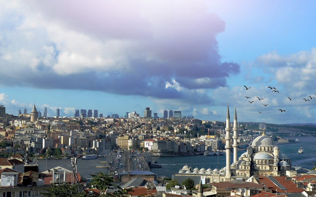 Praktikum in Istanbul bei IHD, Human Rights Association, Studienfach Psychologie
