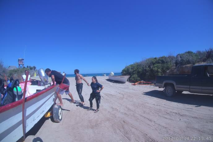 "Praktikum an NGO ""Pelagios Kakunjá"" in La Paz, Baja California Sur, Mexiko"