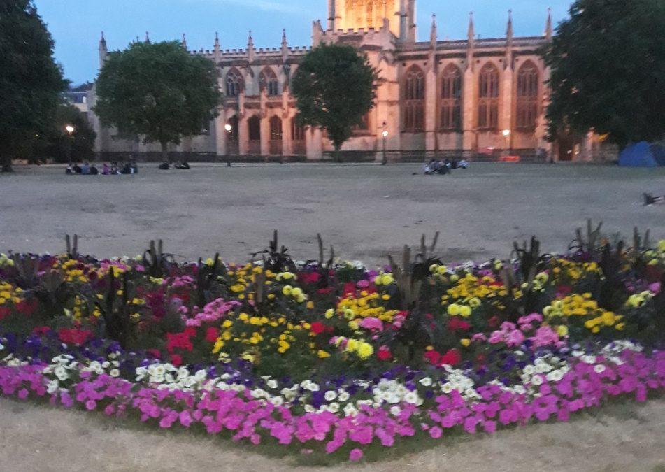 Erfahrungsbericht über mein English-Speaking-Cultures Auslandspraktikum in Bristol