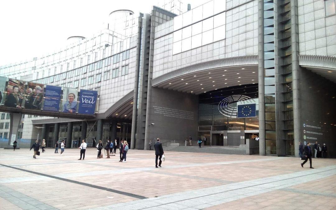 Praktikum beim Auslandsbüro der Heinrich Böll Stiftung in Brüssel