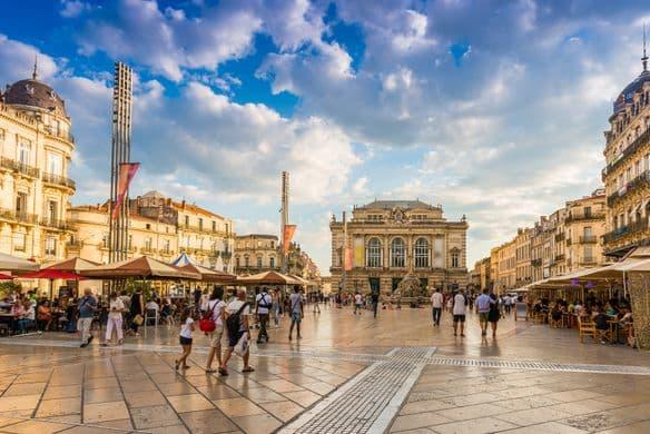 Montpellier – Praktikum im Institut für Ökologie