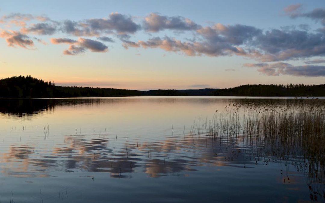 Biologie-Praktikum in Schweden mit Erasmus+