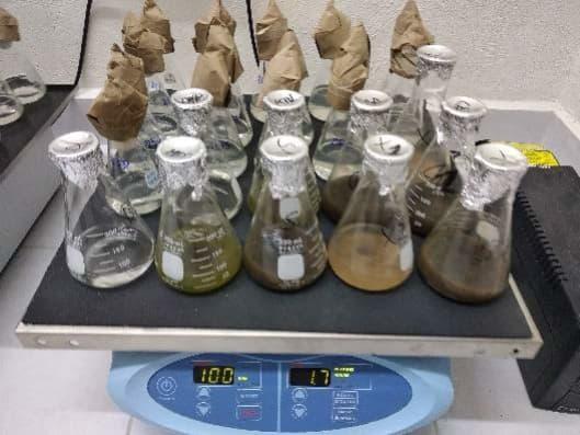Chemie-Praktikum an der UNAM in Mexiko
