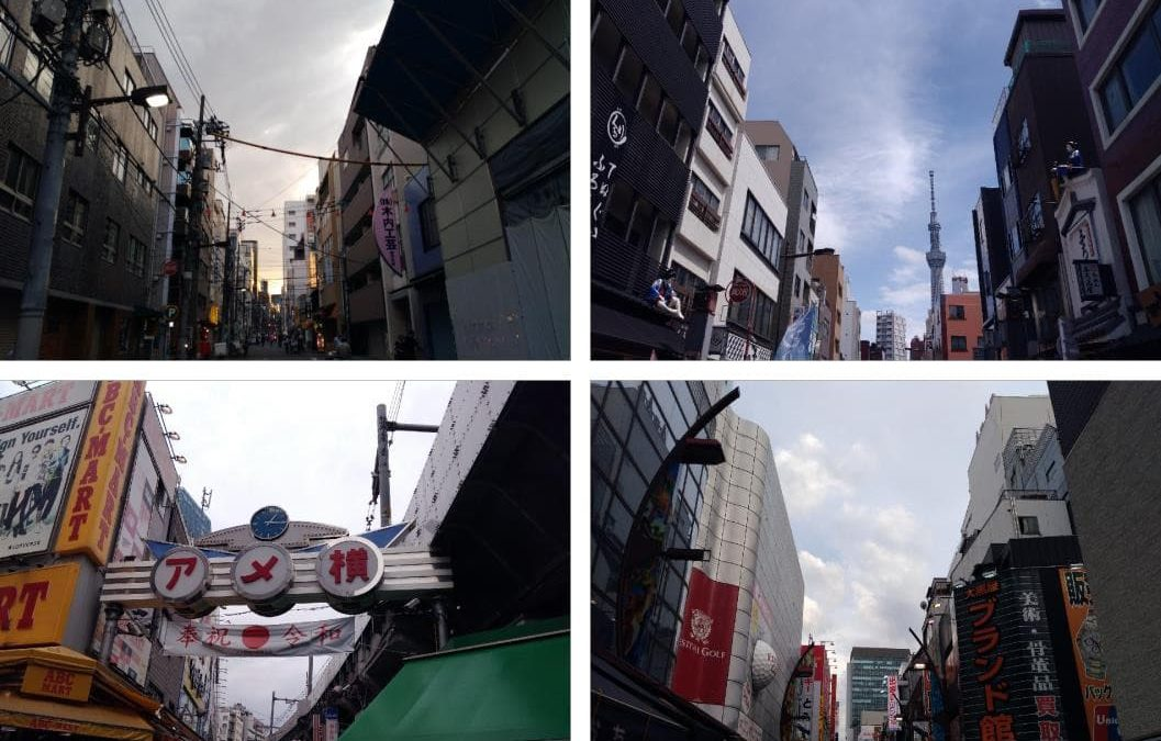 Into Japan! – Physical Geography internship in Tokyo