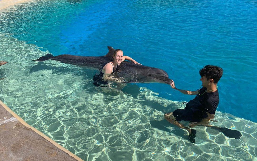Ein Sommer mit Delfinen – Biologie-Praktikum in Griechenland mit Erasmus+