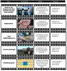 Abbildung 2: Ausgewählte Erklärvideos