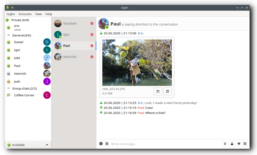 "Screenshot vom Jabber-Client ""Gajim"""