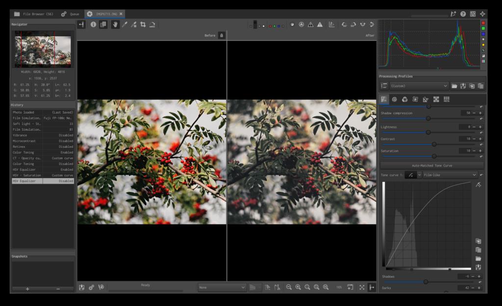 Screenshot der Foto-Entwicklungssoftware RAWTherapee