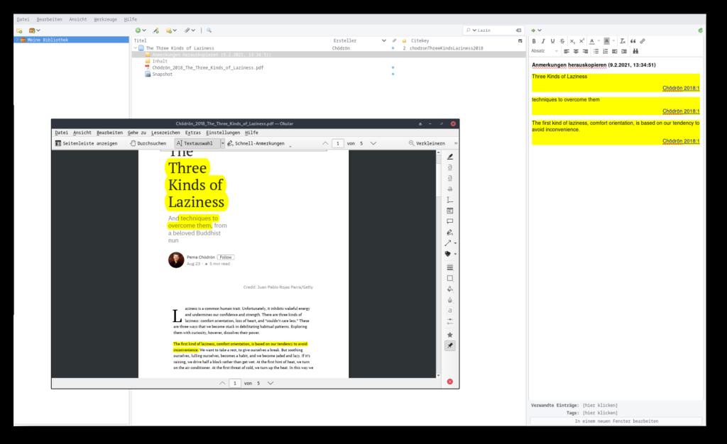 Screenshot von Zotero und einer PDF aus der Anmerkungen als Zotero-Notizen automatisch übertragen wurden